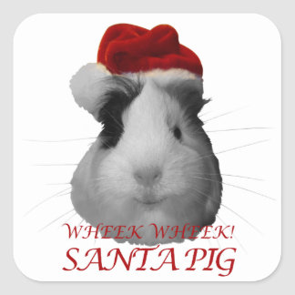 Santa Claus Pig Guinea Pig Christmas Holidays Square Sticker