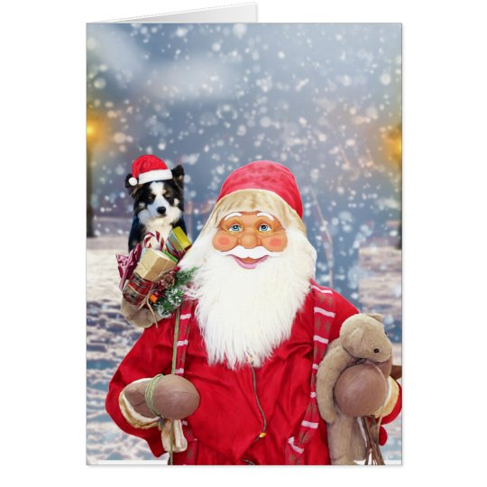 Santa Claus w Christmas Gifts Border Collie Dog
