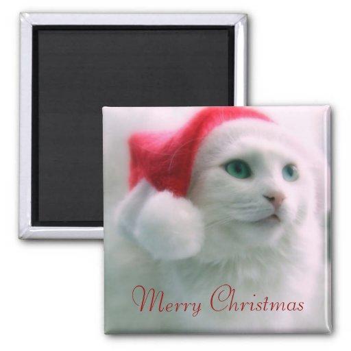 Santa Claws Magnets