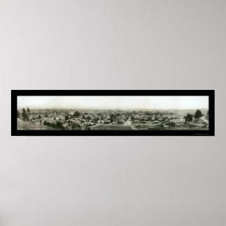 Santa Cruz CA Skyline Photo 1909 Posters