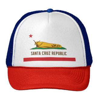 Santa Cruz Republic Banana Slug Flag Cap