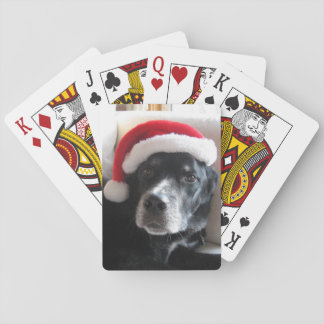Santa Dog-Labrador Rottweiler Mix Playing Cards