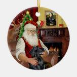 Santa - Flat Coated Retriever