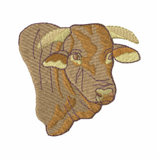 Santa Gertrudis Bull
