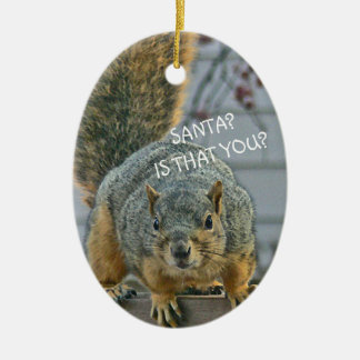 """""""SANTA, IS THAT YOU?""""  WIDE- EYED SQUIRREL ORNAMEN CHRISTMAS ORNAMENT"""