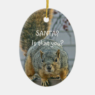 """""""SANTA, IS THAT YOU?""""  WIDE- EYED SQUIRREL ORNAMEN Double-Sided OVAL CERAMIC CHRISTMAS ORNAMENT"""