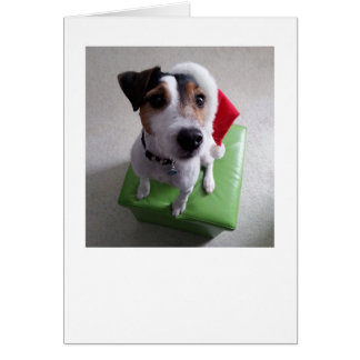 Santa Jack Russell Terrier Christmas Card