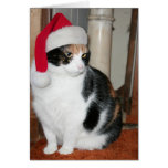 Santa Kitty Christmas card for cat lover