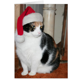 Santa Kitty Christmas card for cat lover