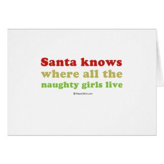 Santa knows all the naughty girls greeting card