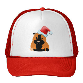Santa Lyric Hat