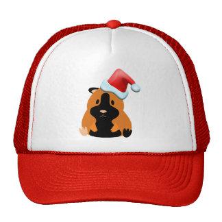 Santa Lyric Hat