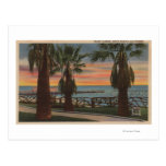 Santa Monica, CA - Yacht Harbour and Sunset View Postcard