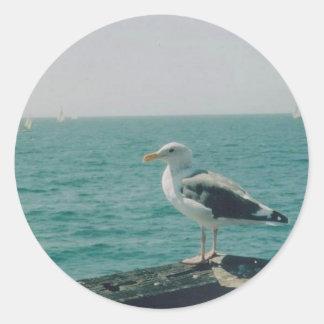 Santa Monica Seagull Classic Round Sticker