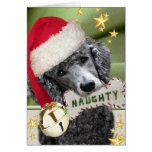 Santa Poodle Naughty or Nice Cards
