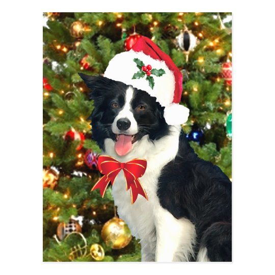"""""""Santa Pup"""" Holiday Postcard"""