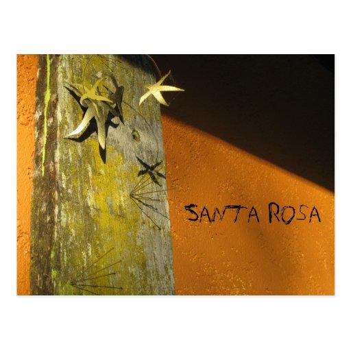 Santa Rosa Art District Post Card