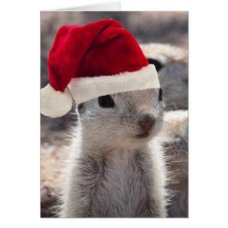 Santa Squirrel Christmas Card