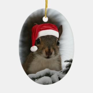 Santa Squirrel Christmas Ornament
