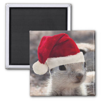 Santa Squirrel Magnet