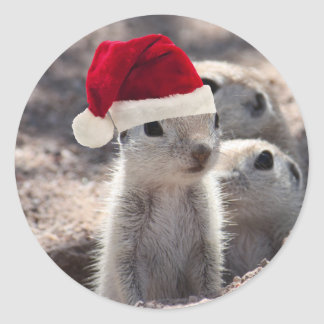 Santa Squirrel Stickers