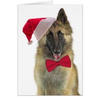 Santa Tervuren Christmas Card