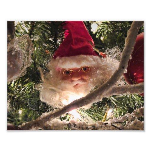 Santa Tree Ornaments, Red Christmas Balls, Lights Photograph