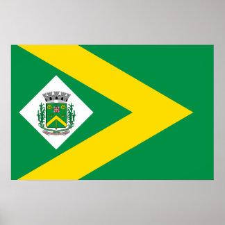 Santabarbaradoeste Saopaulo Brasil, Brazil flag Print