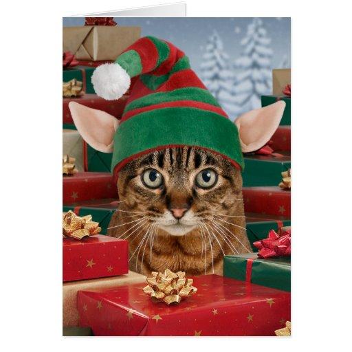 Santa's Elf-Cat Christmas Card