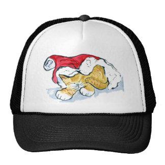 Santa's Hat Nap