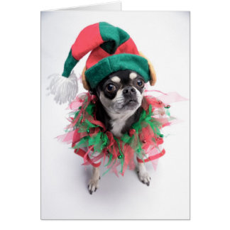 Santa's Little Helper Elf Dog Card