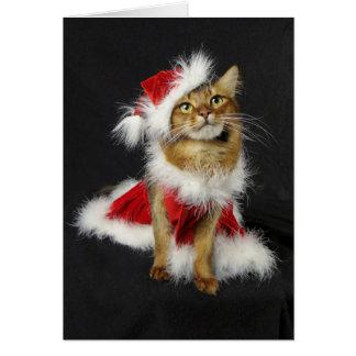 Santa's Little Helper Somali Cat Christmas Card