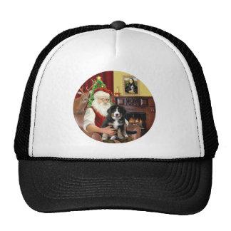Santas new- Bernese Mountain Dog Puppy (L) Mesh Hat