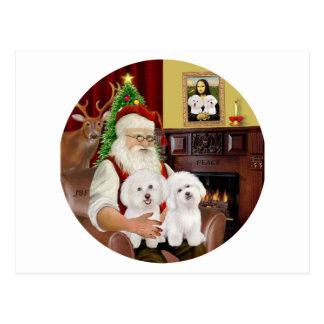 Santa's Two Bichon Frise Postcard