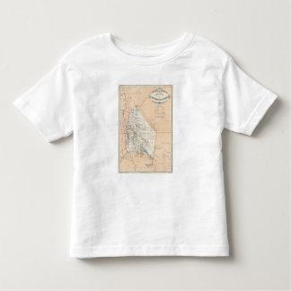 Santiago del Estero, Argentina Toddler T-Shirt