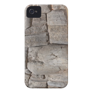 Saqsaywaman Lost Ancient Technology iPhone 4 Case-Mate Cases