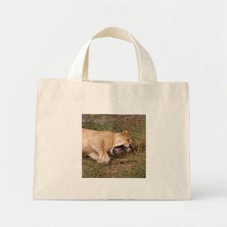 sarabi-nap-024 mini tote bag