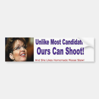Sarah Palin For Vice President Bumper Stickers