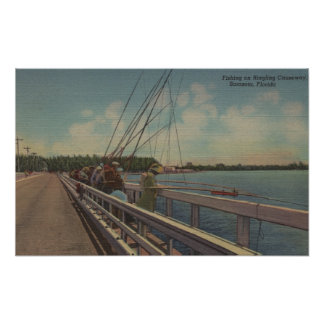 Sarasota, FL - View of People Fishing Off Poster