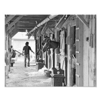Saratoga Shedrow at Horse Haven Photo Print