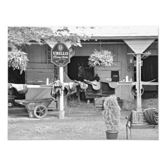 "Saratoga Stables ""Horse Haven"" Art Photo"