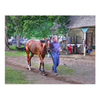 """Saratoga Stables """"Horse Haven"""" Post Card"""