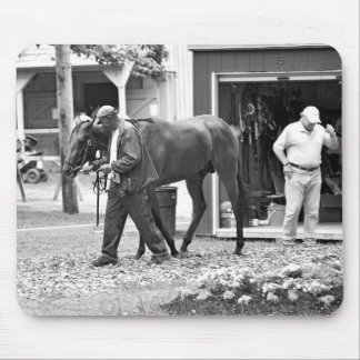 Saratoga Stables Mouse Pads