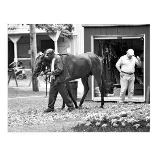 Saratoga Stables Post Card