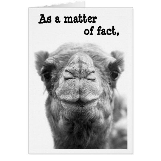 Sarcastic & Funny Camel Photo Graduation Card