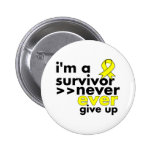 Sarcoma Cancer Survivor Never Give Up Pinback Buttons