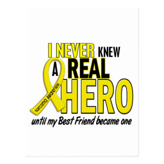Sarcoma NEVER KNEW A HERO 2 Best Friend Postcard