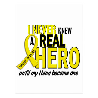 Sarcoma NEVER KNEW A HERO 2 Nana Postcard