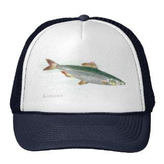 Sardine Trucker Hats