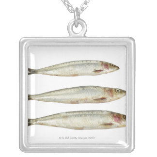 Sardines (Pilchards) 2 Silver Plated Necklace
